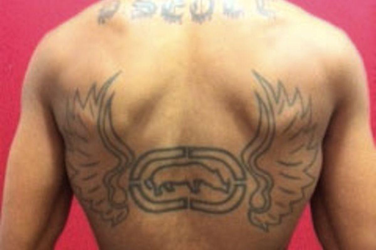 Ecko on the back, image courtesy of Ecko