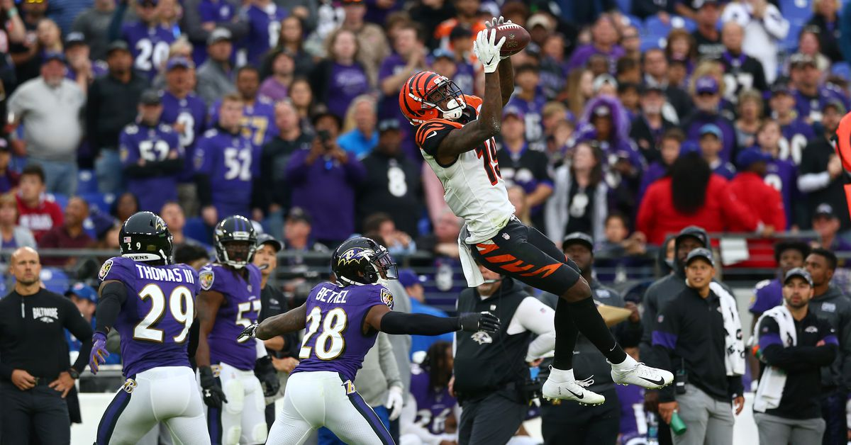 Ravens redemption: Auden Tate's game in Baltimore proves his acclimation into the offense