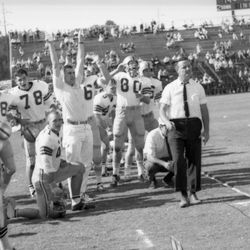 1964-FSU offensive ends coach Bobby Bowden on sideline with players during game in Tallahassee against the University of Kentucky.