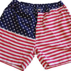 """<b>Chubbies</b> 'MERICAS Shorts, <a href=""""http://www.chubbiesshorts.com/collections/in-stock/products/mericas"""">$59.50</a>"""
