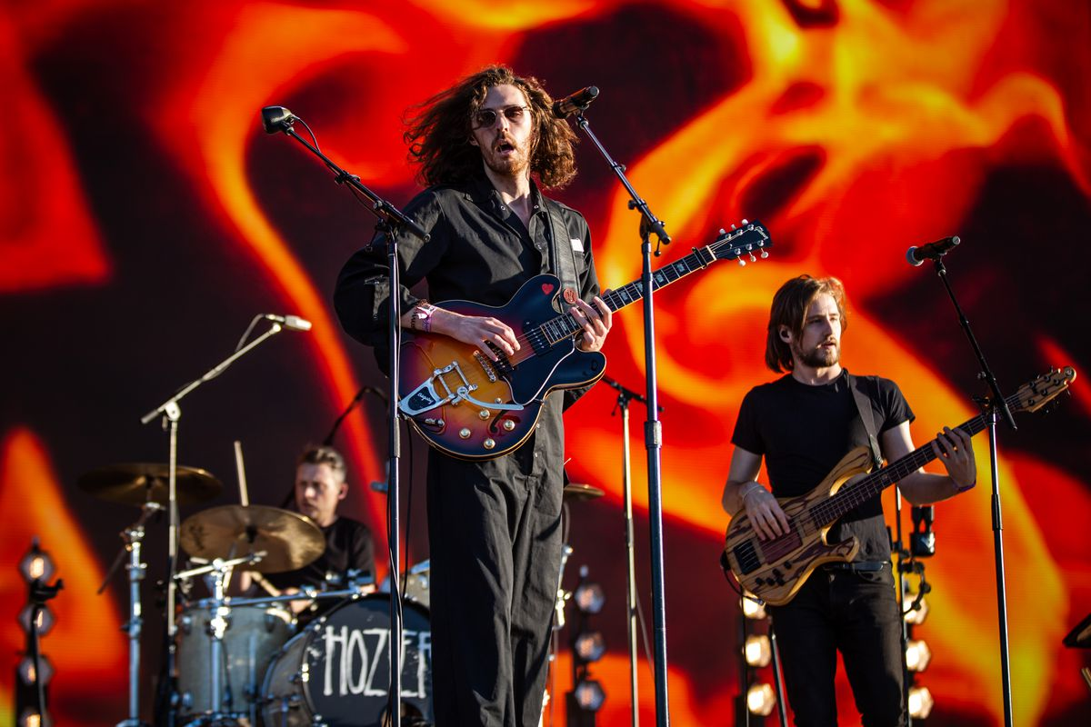 Image result for hozier lollapalooza