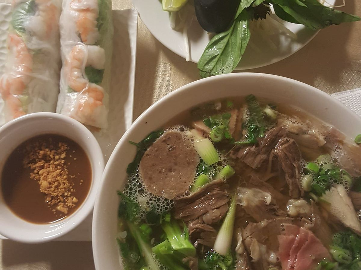 A bowl of pho with spring rolls on the side
