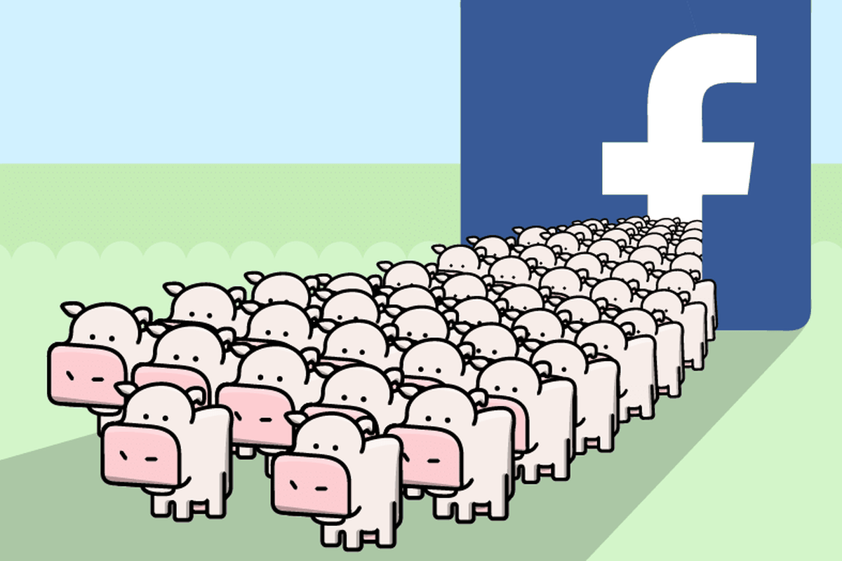 A cartoon of pink cows coming out of a Facebook logo