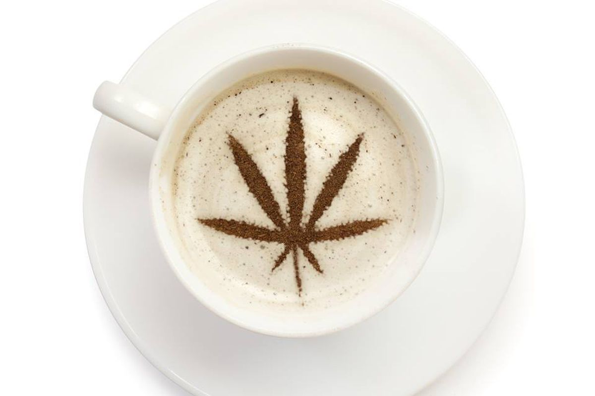 Lexus San Diego Home Facebook >> Cannabis Coffee: Coming Soon to a Suburb Near You - Eater ...