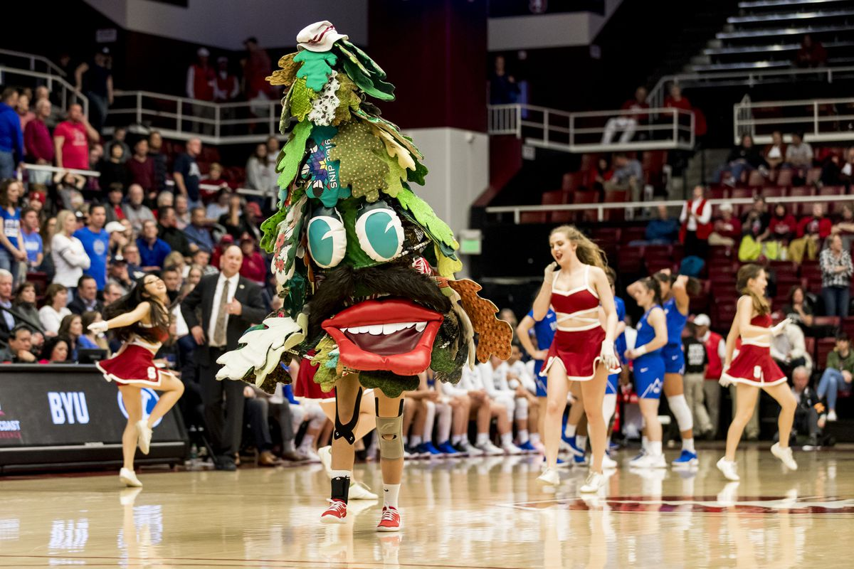 The Stanford Tree mascot dances with the Stanford cheerleaders during the NCAA Second Round Womens Basketball game between the Stanford Cardinal and BYU Cougars on March 25, 2019 at Maples Pavilion in Palo Alto, CA.