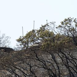 A playground is seen at the top of the charred hillside of Combe Road in Ogden on Wednesday, Sept. 6, 2017. At least six structures, including multiple homes, have been destroyed after a brush fire erupted in Weber Canyon Tuesday morning.
