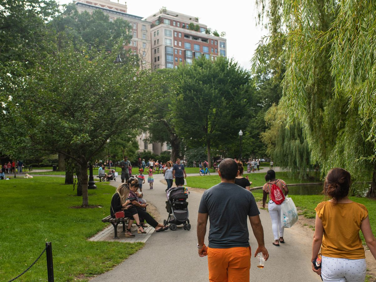 A lush, busy city park with buildings in the background.