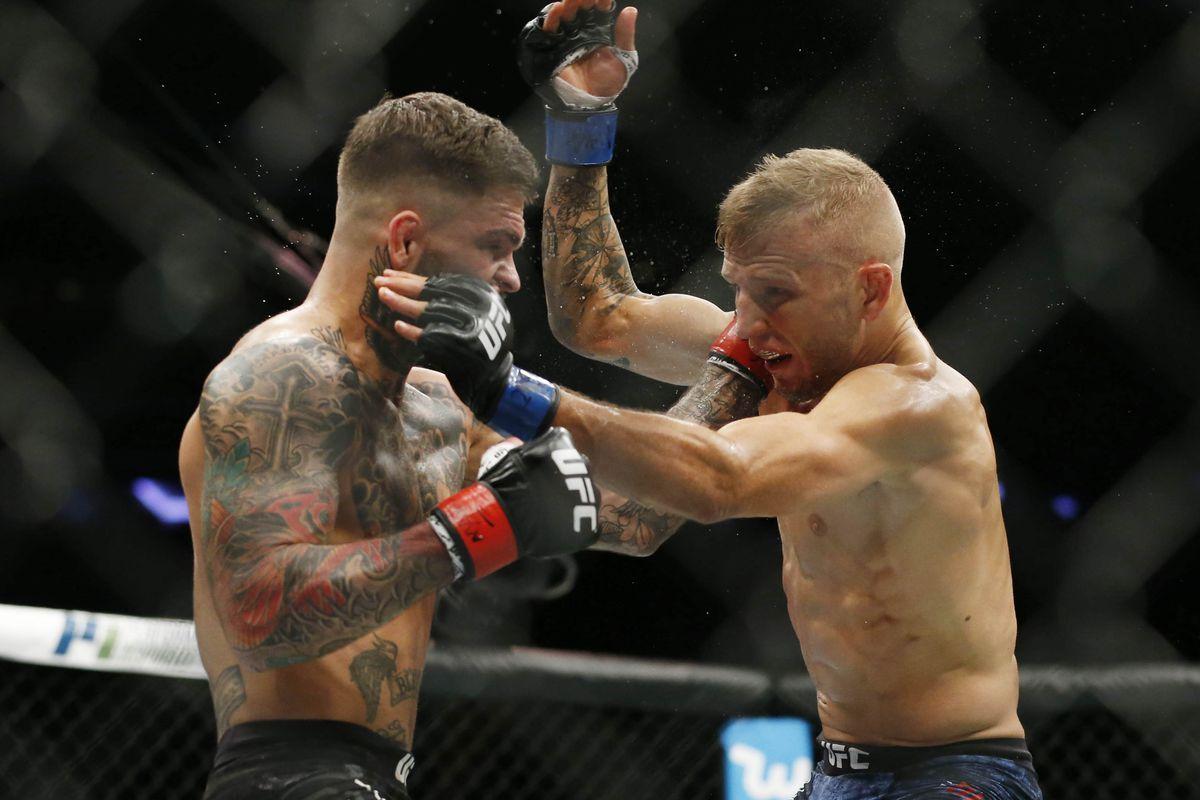MMA: UFC 217-Garbrandt vs Dillashaw