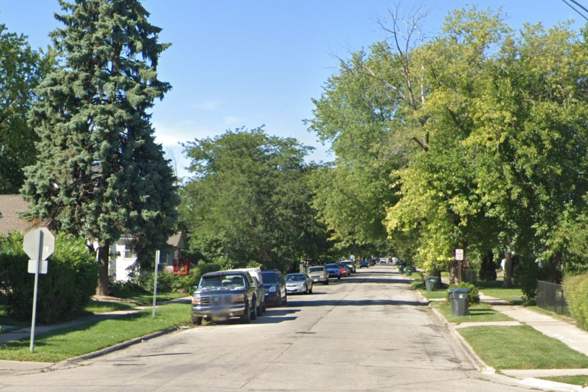 Police said they found the cats in a home in the 300 block of South Elmwood Avenue, Waukegan.