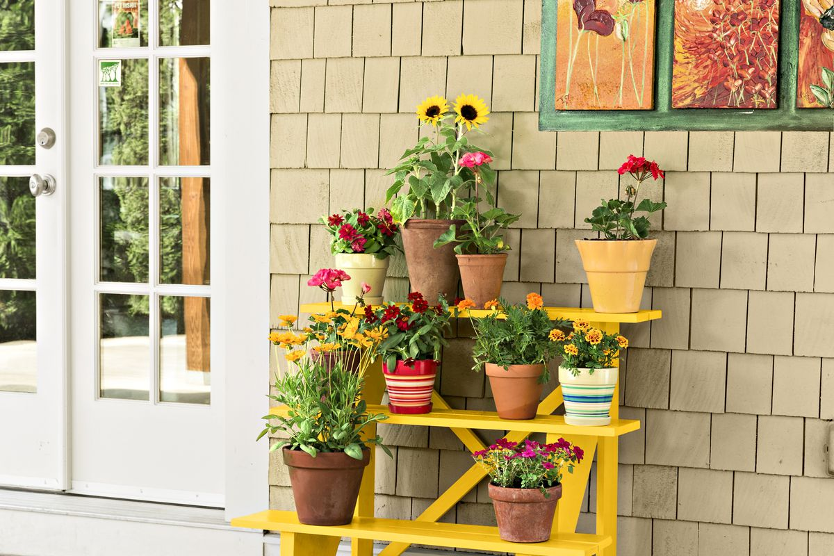 Make A Stair Riser Plant Stand This Old House