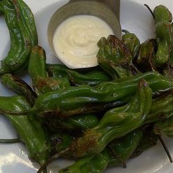 blistered shisito peppers at wood and vine, by current events