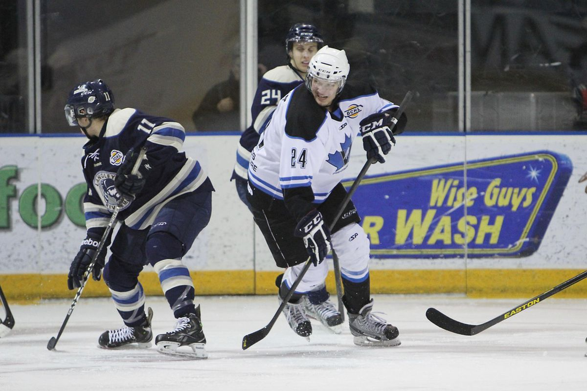 Penticton Vees forward Jedd Soleway (white, #24) will join the Badgers this fall.