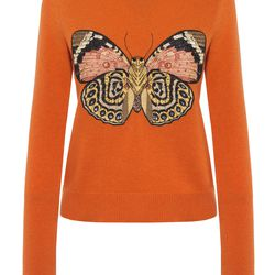 A vibrant orange, ribbed sweater with a giant moth emblazoned across the front