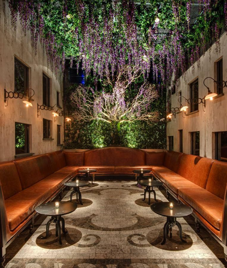 The interior of a tapas lounge decorated with indoor plants hanging from the walls and ceiling