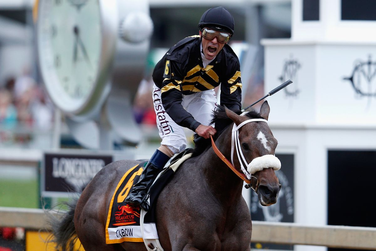 Oxbow, under Gary Stevens, wins the 138th running of the Preakness Stakes