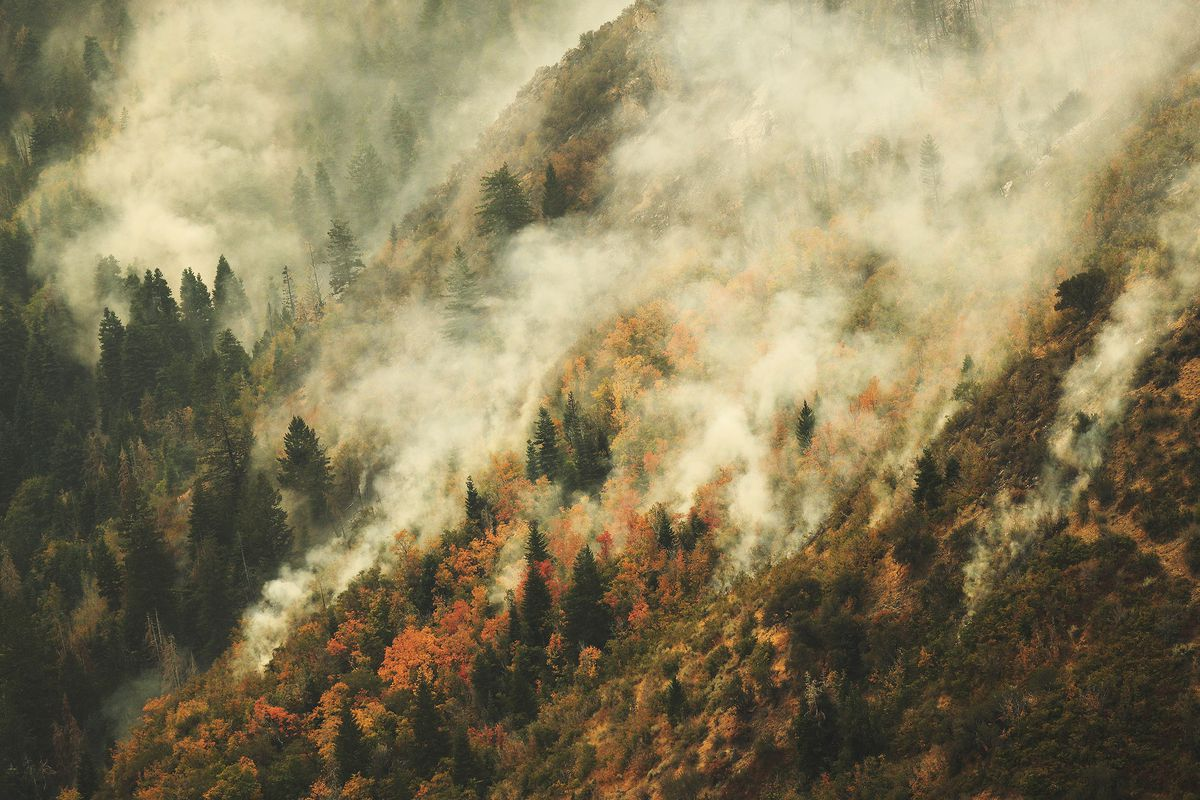 Following wildfires, Utah County to receive $10 6 million in