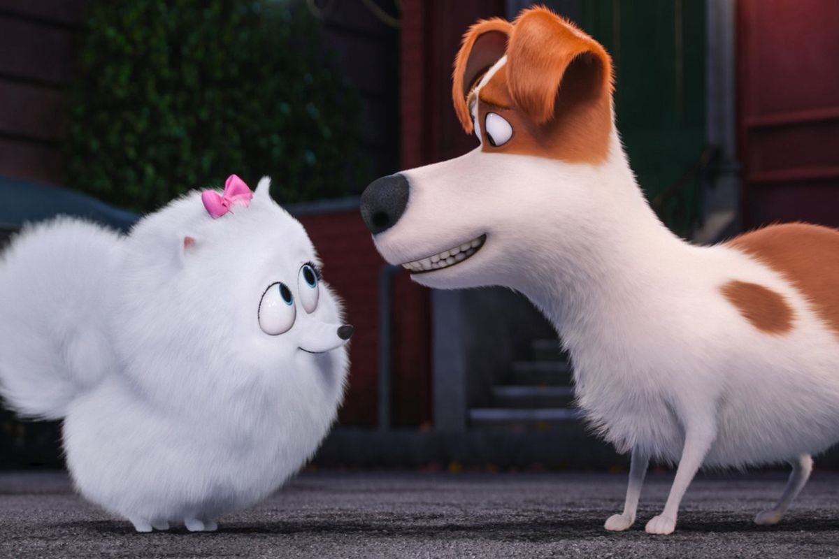 The Secret Life Of Pets Is Messy Mean And A Lot Of Fun Vox