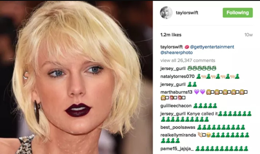 Taylor Swifts Internet Rulebook The Verge