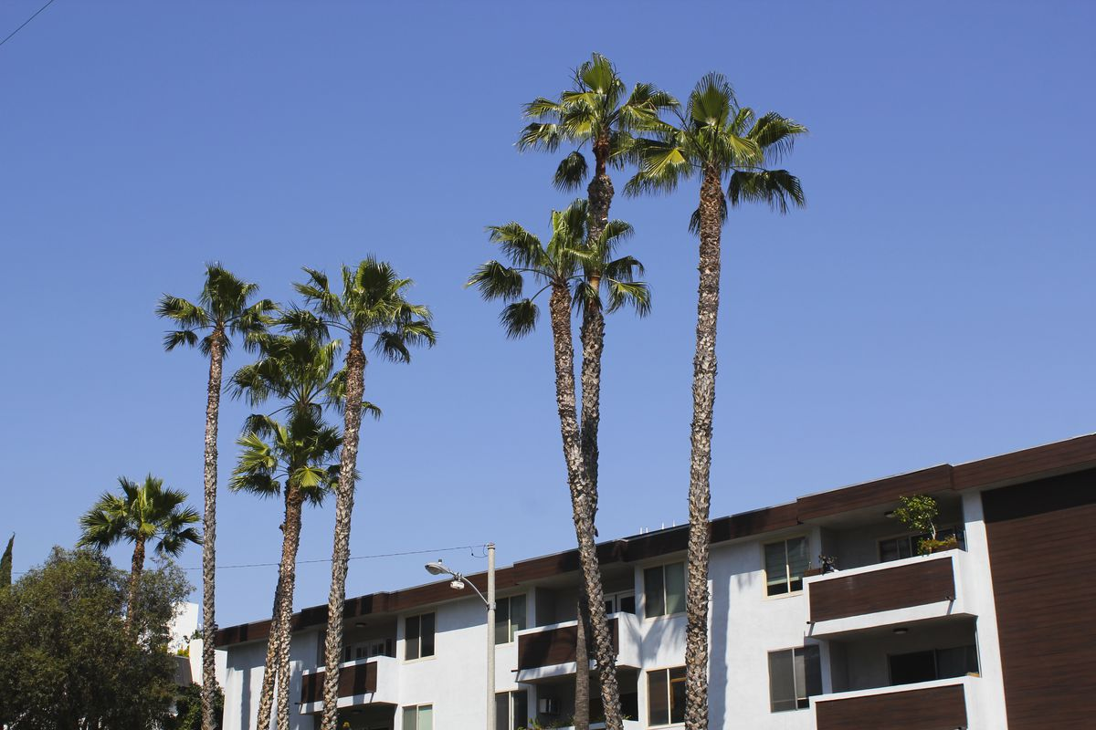 La rental prices increase for the seventh month straight for One month rental los angeles