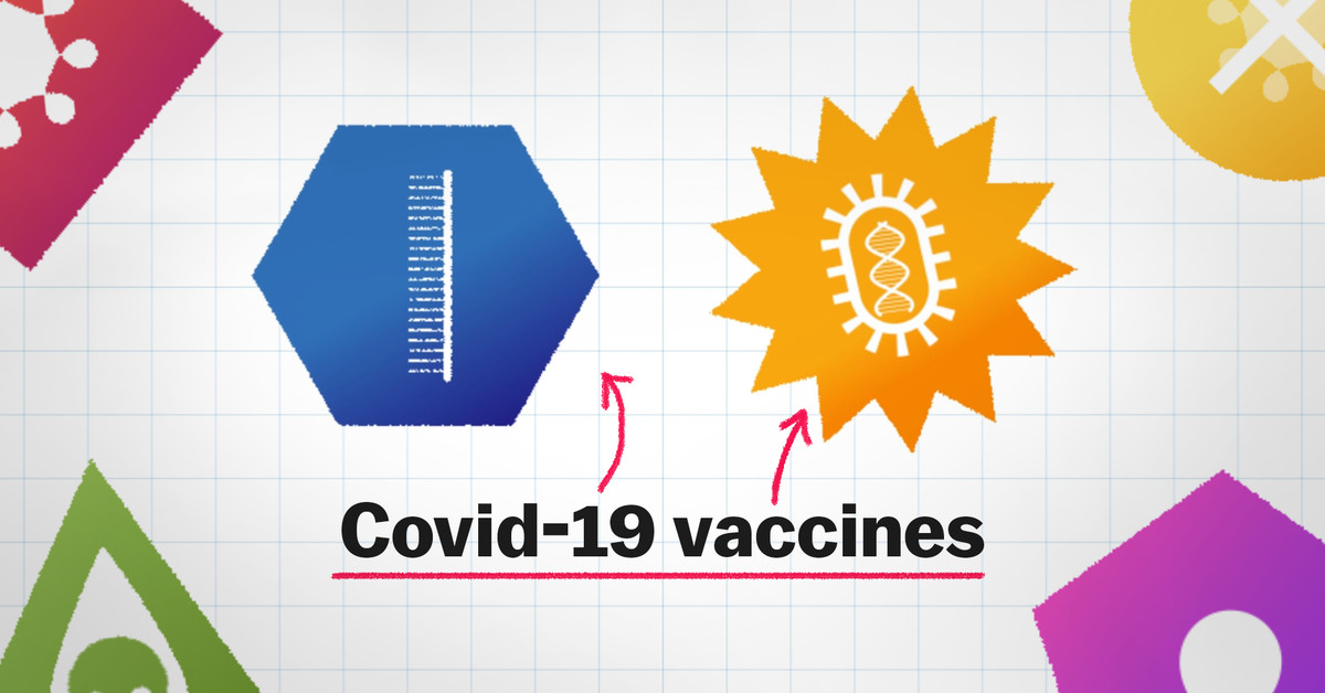 www.vox.com: How the newest vaccines fight Covid-19