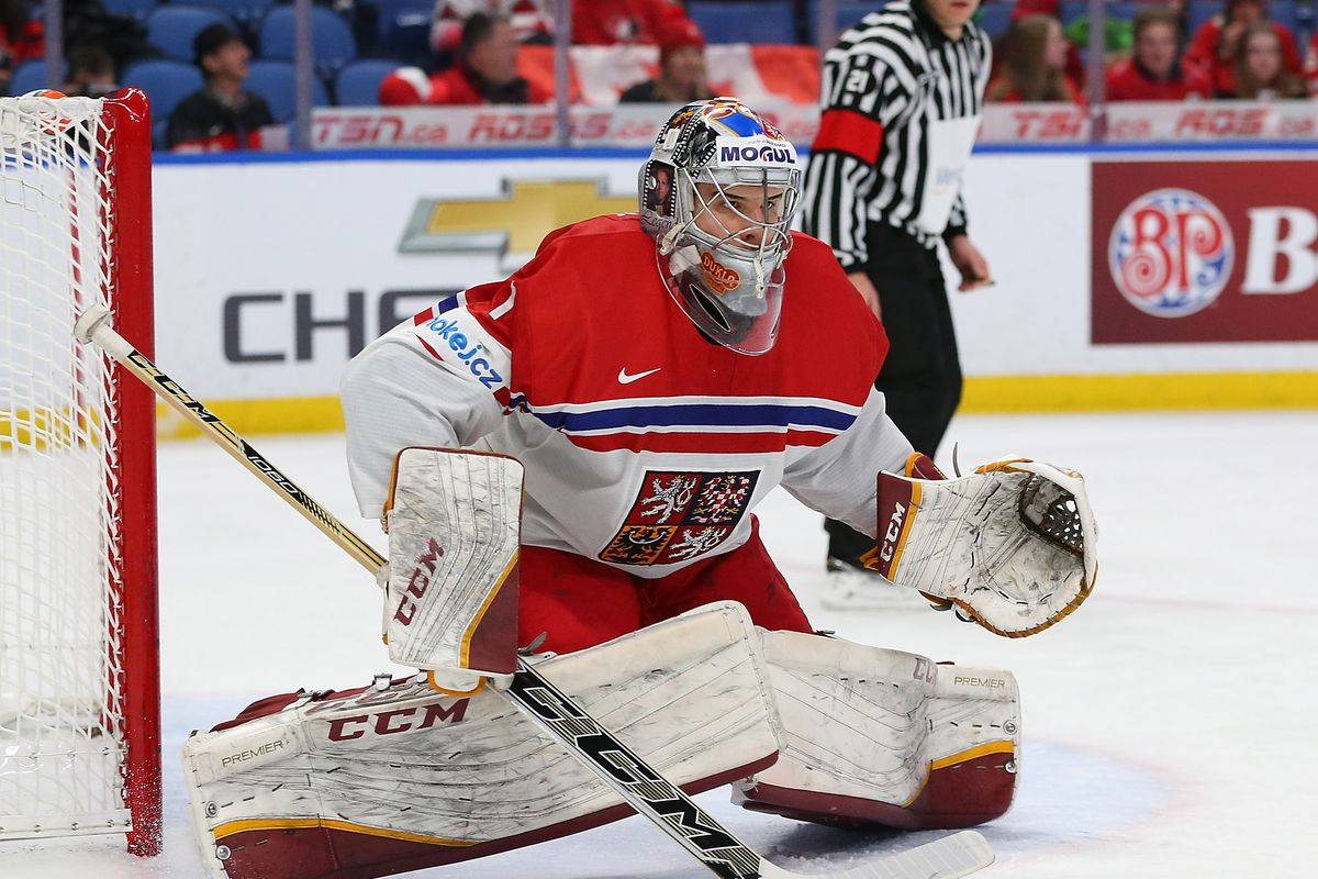 Get To Know The Top Goalies In The 2018 Nhl Draft