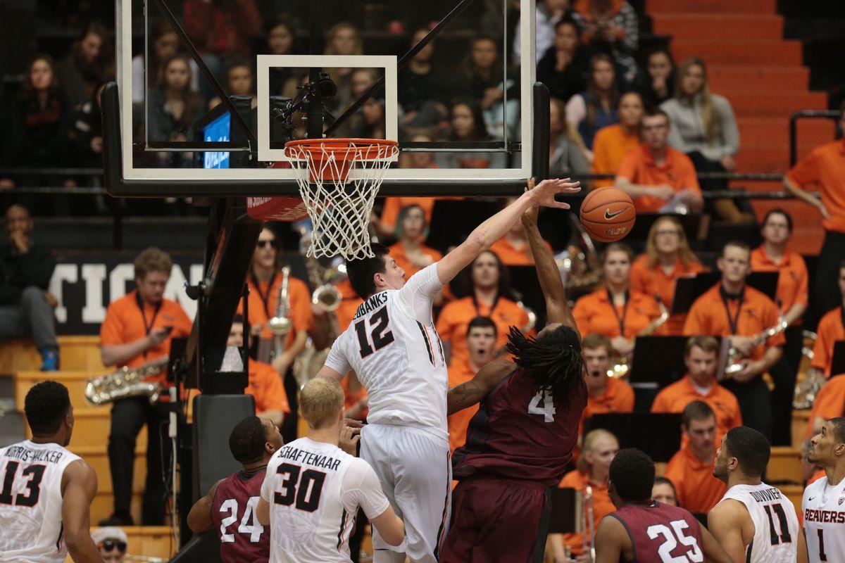 NCAA Basketball: Loyola Marymount at Oregon State