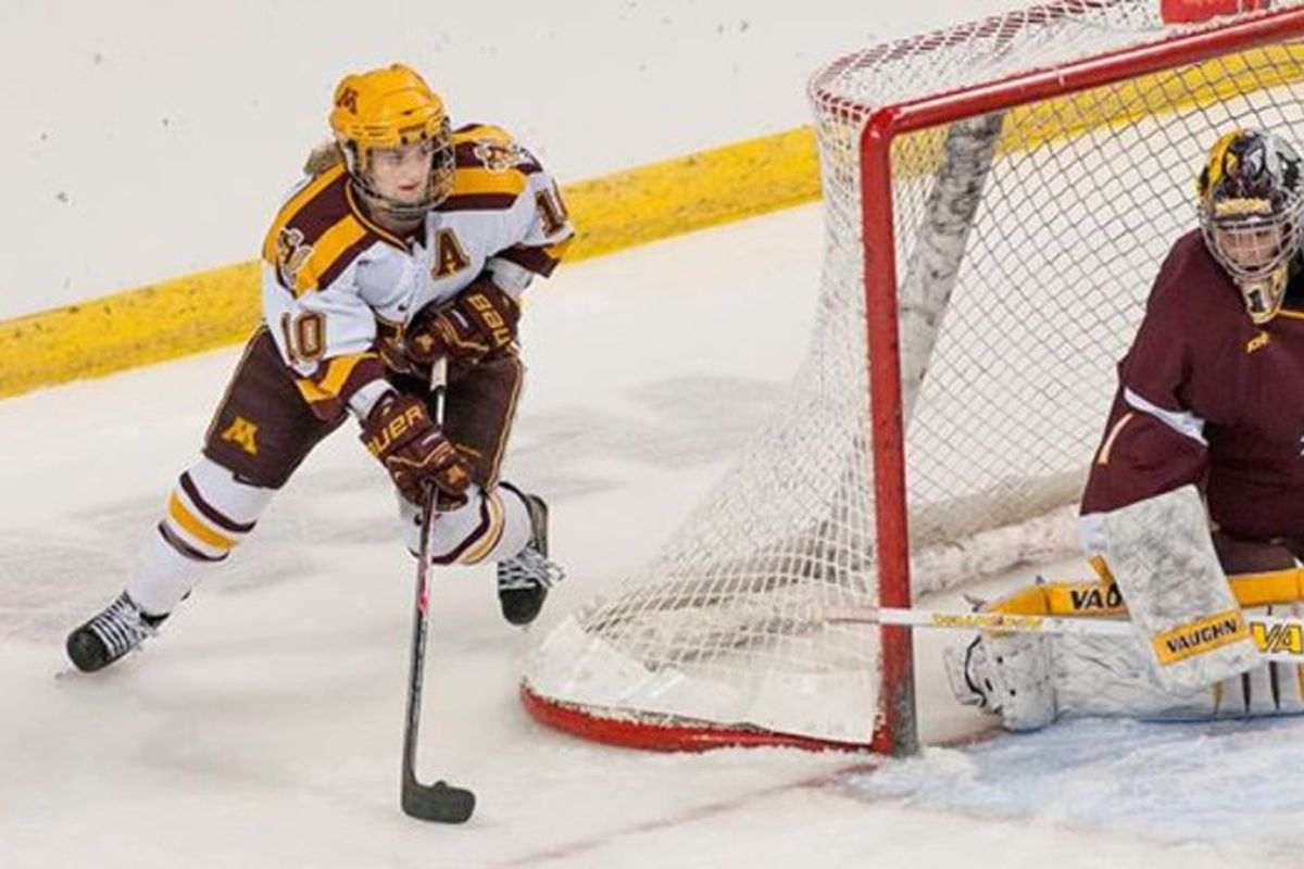 Kelly Terry had 3 goals Saturday for Minnesota, which faces WCHA rival Wisconsin in the Frozen Four