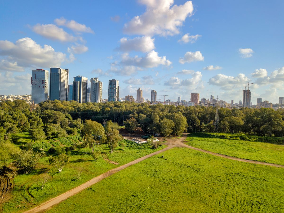 In the foreground is a park surrounded by trees. In the distance is a city skyline with many tall city buildings.