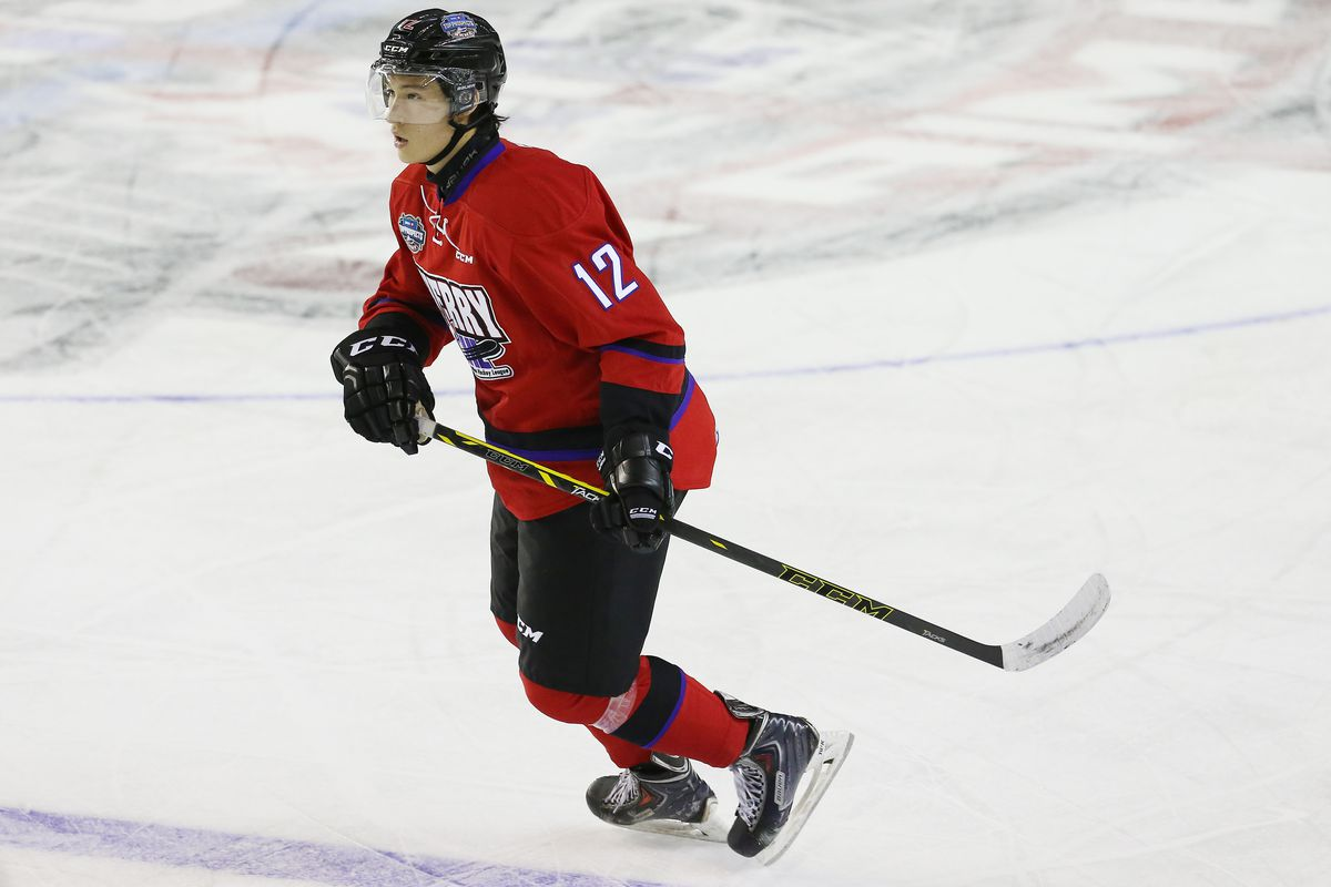 45432545f Dennis Yan  2015 NHL Draft Prospect Profile - All About The Jersey