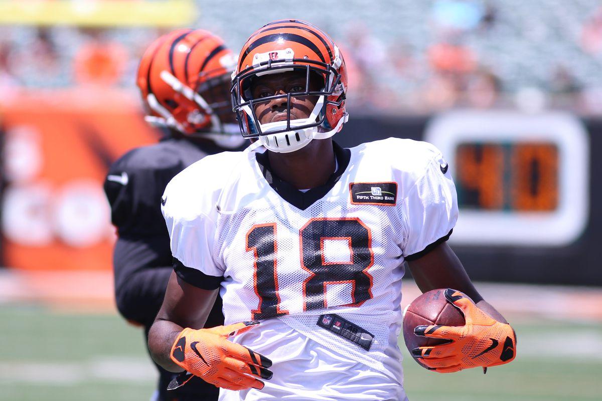 NFL: AUG 05 Bengals Training Camp