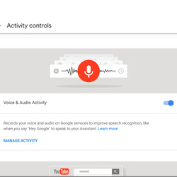 """You can then toggle """"Voice & Audio Activity"""" on or off."""