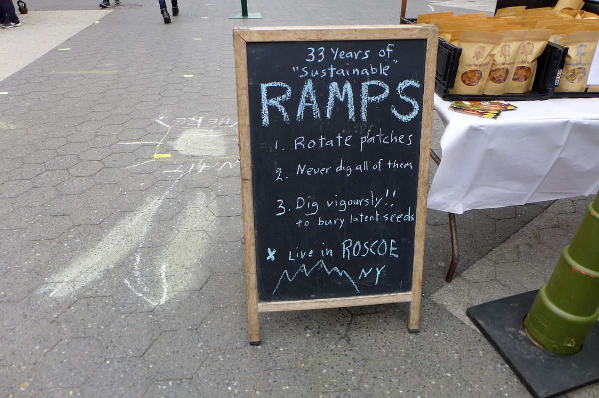 A chalkboard sign shows the rules for harvesting ramps sustainably.