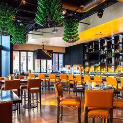 The bar at Chayo Mexican.