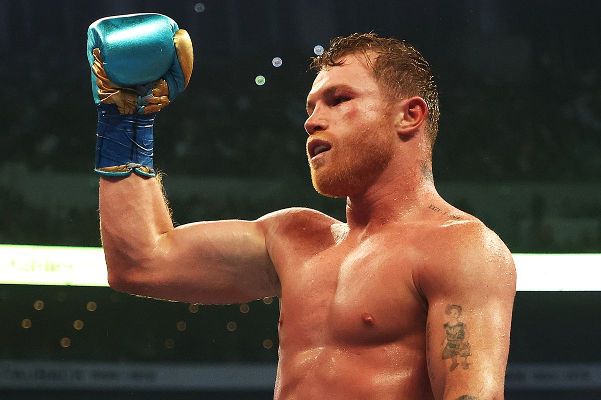 Canelo Alvarez has his next fight officially set against Caleb Plant.