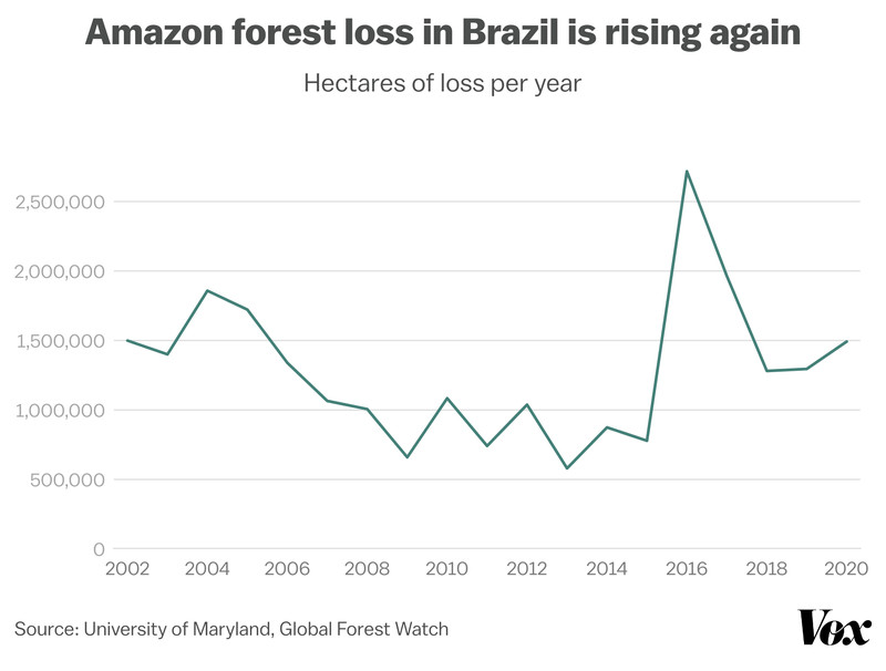 Tree cover loss rose in Brazil's Amazon in 2020 after sharp declines in recent years.