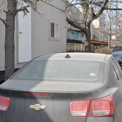 Dust-covered car parked north of the players' parking tent -