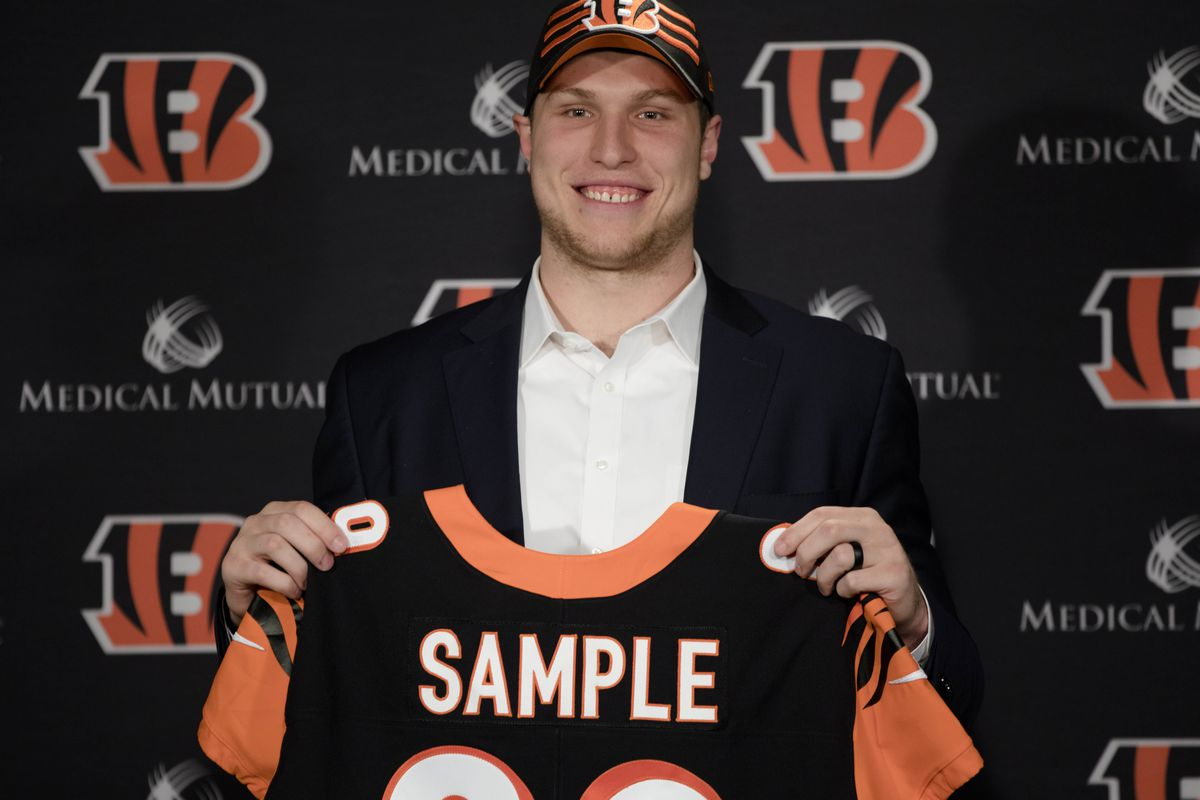 Bengals second-round pick Drew Sample impresses at rookie minicamp