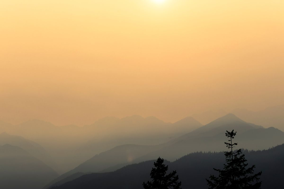 A sky turned yellow by smoke at sunset, with a line of trees barely visible in the foreground.
