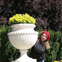 Carrie Christenson, a garden supervisor at Thanksgiving Point, has just finished helping to plant thousands of mums as part of the Mum Festival.