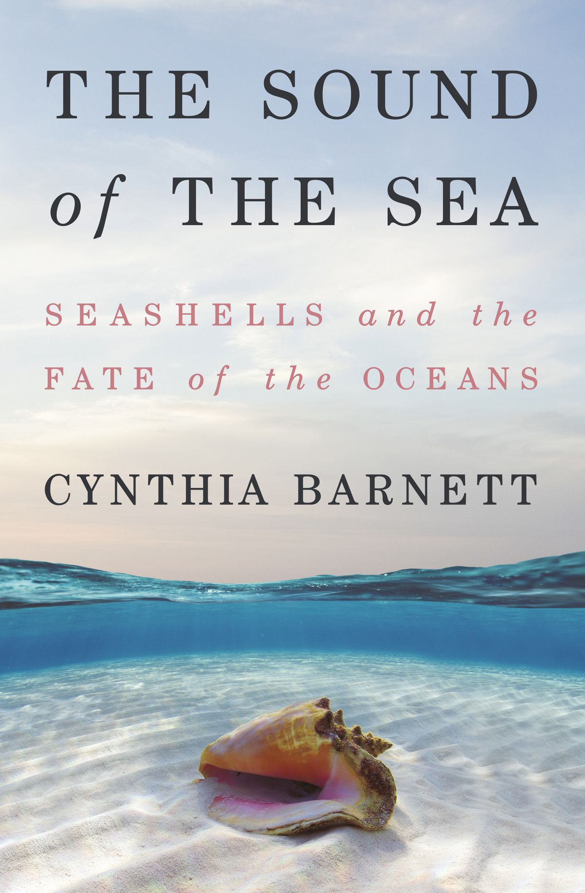 """The cover of the Cynthia Barnett book """"The Sound of the Sea: Seashells and the fate of the oceans."""""""