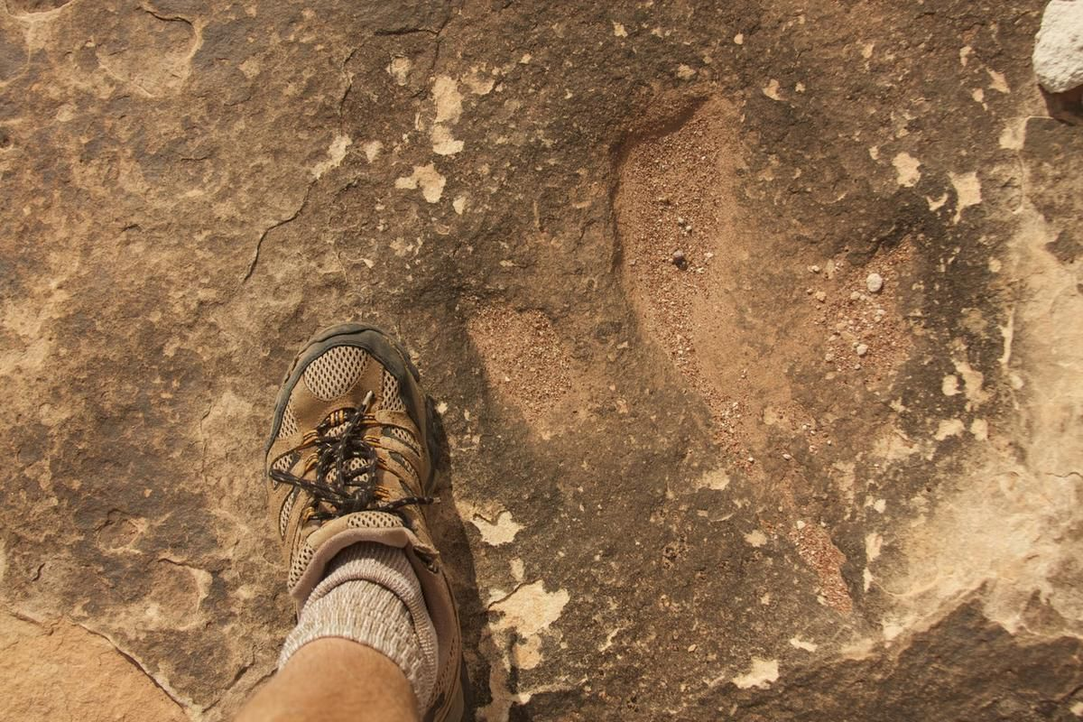 FILE - Dinosaur tracks at Moab shown in comparison with a human foot. The Bureau of Land Management's Moab field office invites the public to the grand opening of the Mill Canyon Dinosaur Tracksite Trail on Friday, April 1, near Moab.
