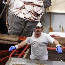 FILE - This May 14, 2012 file photograph shows crewman Jeremy Prior offloading flounder from a fishing boat in New Bedford, Mass., Monday, May 14, 2012. The U.S. seafood catch reached a 17-year high in 2011, with all fishing regions of the country showing increases in both the volume and value of their harvests.  New Bedford, Mass., had the highest-valued catch for the 12th straight year, due largely to its scallop fishery.
