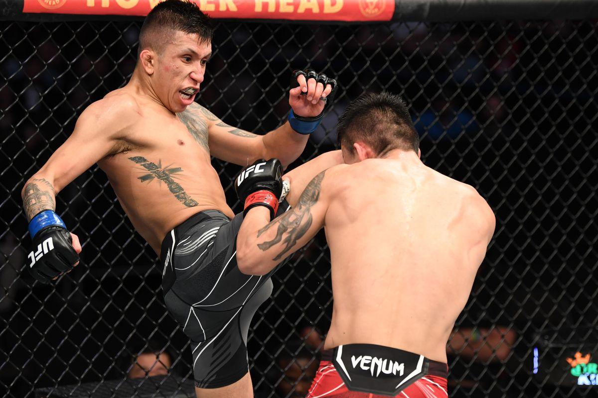 UFC 261: Aoriqileng v Molina