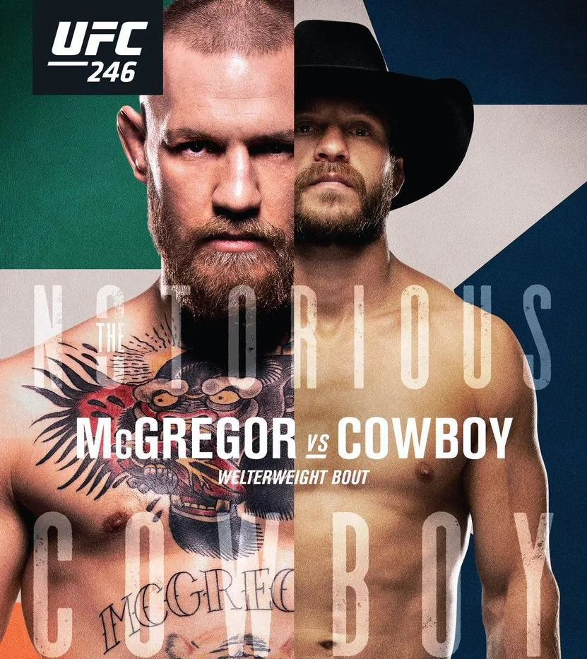 Image result for ufc 246 poster