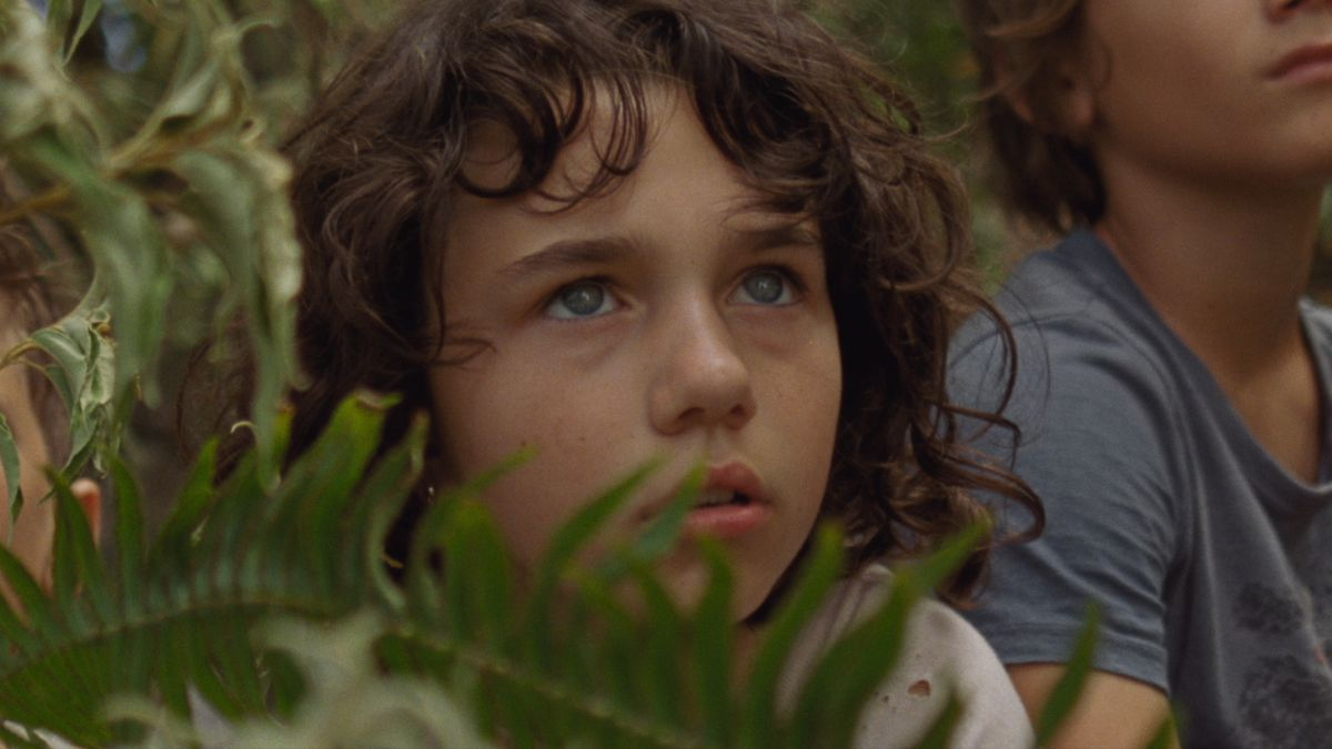 A young, tousel-headed girl peers cautiously from behind a fern in Benh Zeitlin's Wendy.
