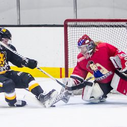 Boston Pride Forward Sydney Daniels gets a shot off on Metropolitan Riveters Goaltender Katie Fitzgerald while falling to the ice.