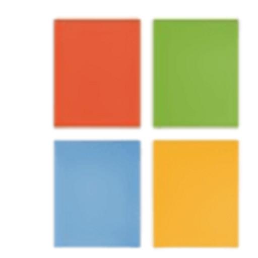 MicrosoftPartner1