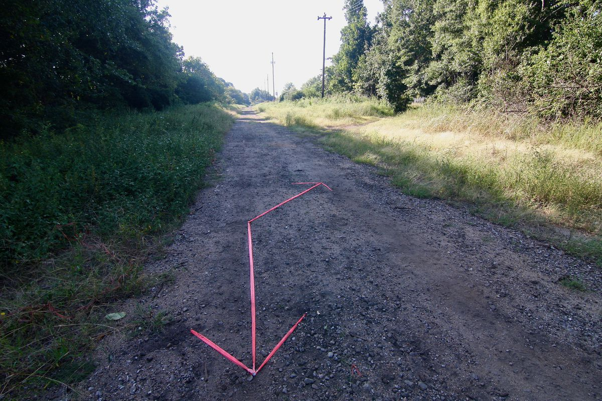 A trail through woods with two arrows on the ground.