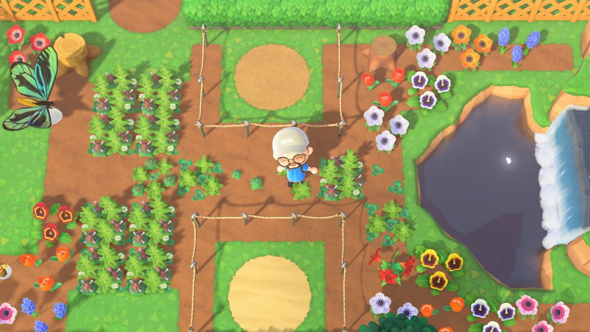 An Animal Crossing player stands in the middle of an ecologically progressive garden.