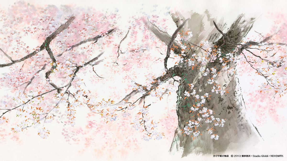the cherry blossom background of the tale of princess kaguya
